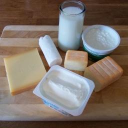 Wie wirken Milchprodukte aus Sicht der 5-Elemente-Lehre?